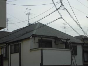 CIMG4664